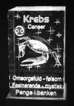 Krebs 5 x 5 x 8 cm